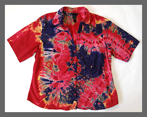Fiesta buttondown blouse